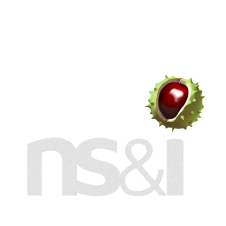 National Savings & Investments logo